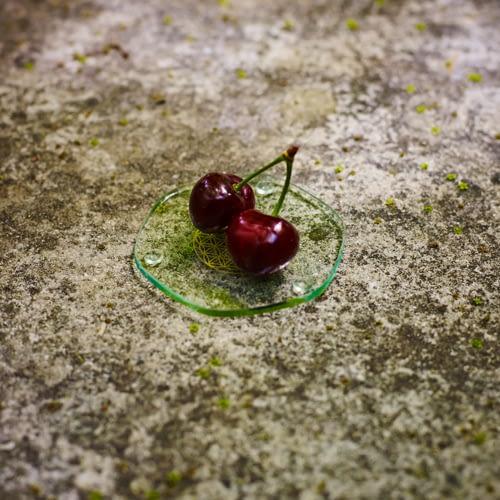 Plaque énergisante aliments Ondes de vie